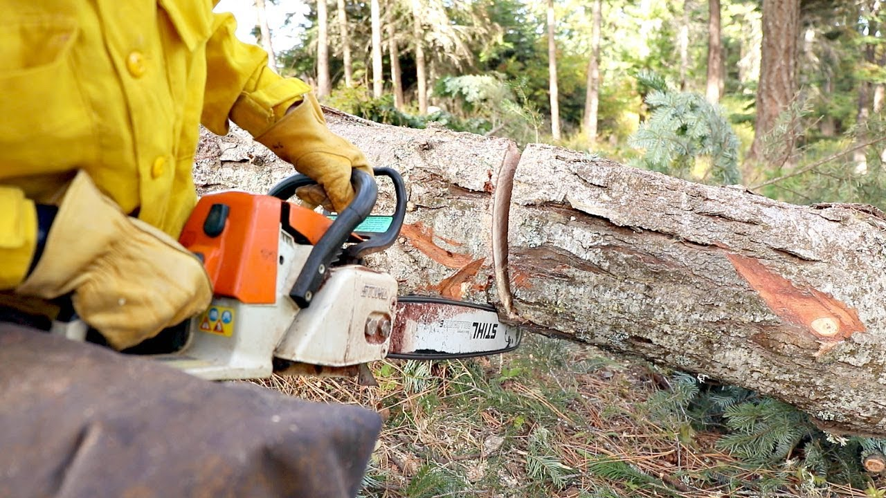 Best Lightweight Chainsaws 2019 - Small Chainsaw Picks & Reviews