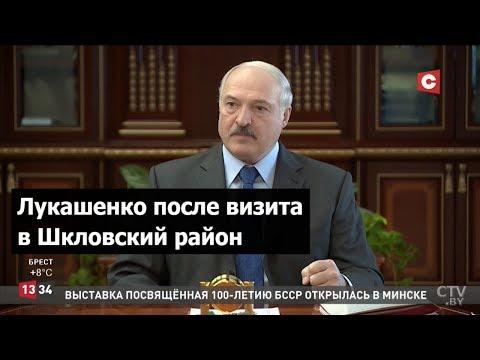 Лукашенко: Корова не