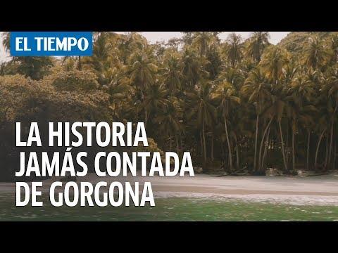 La historia jamás contada de la isla Gorgona |EL TIEMPO