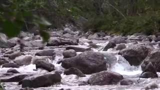Трейлер. 2016. Хибины. Умбозеро. Река Умба. Пеше - водный поход.