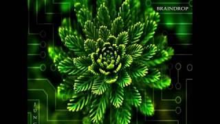 Braindrop-Wooden Vibration