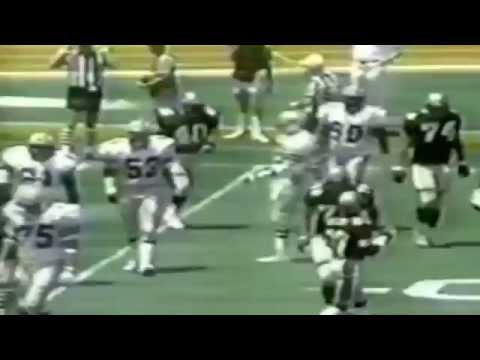 1984 - USFL Divisional Playoffs: Michigan Panthers vs Los Angeles Express