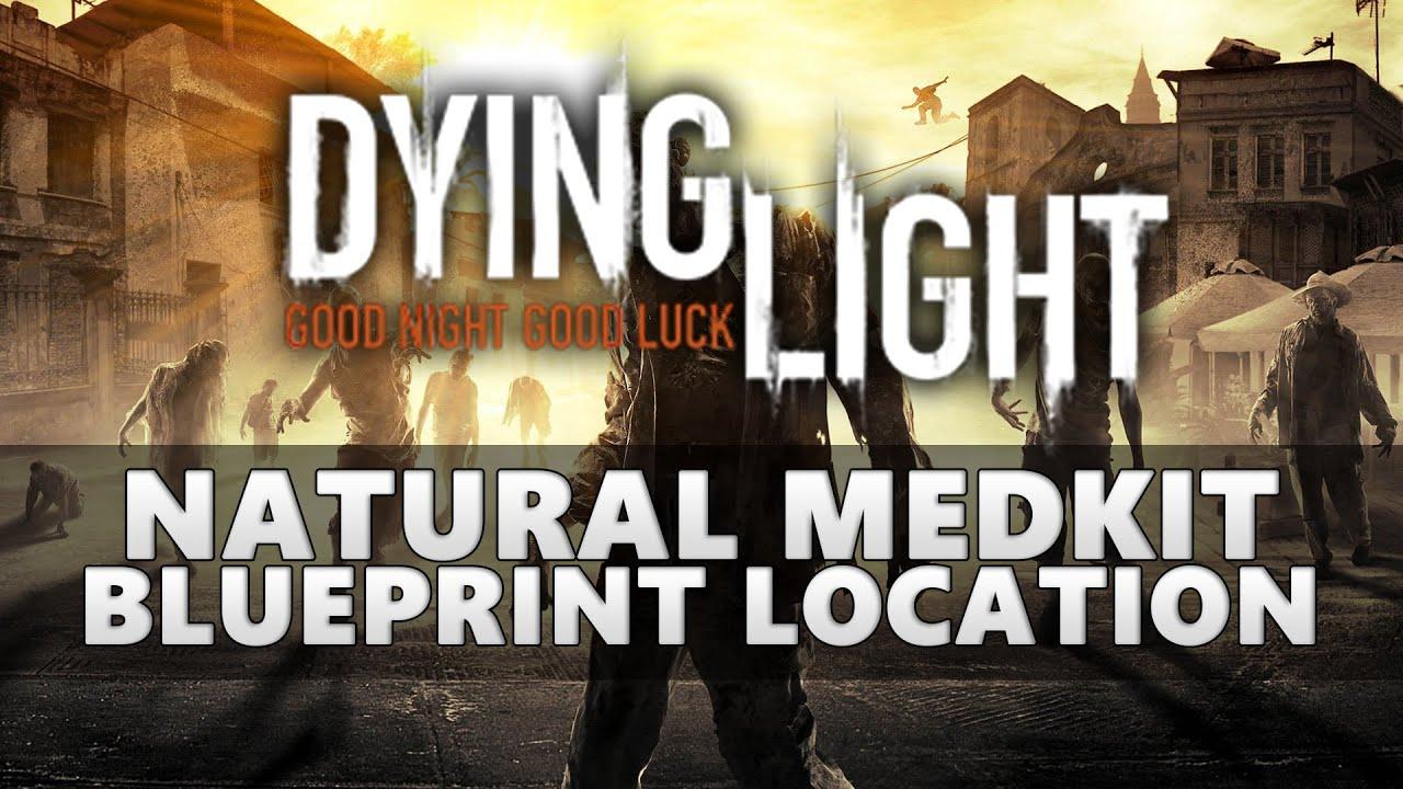 Natural Medkit Dying Light