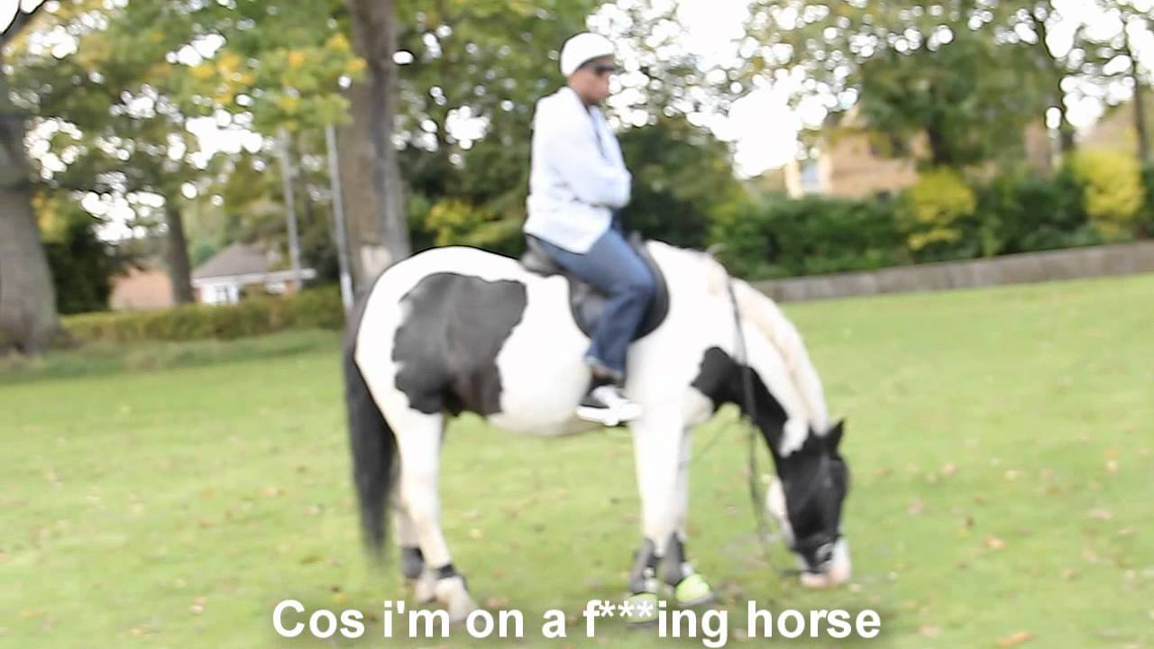 i m on a horse youtube