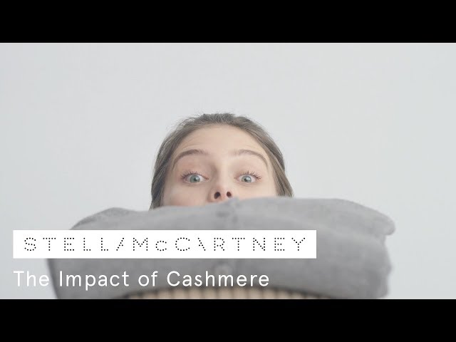 The Impact of Cashmere | Stella McCartney
