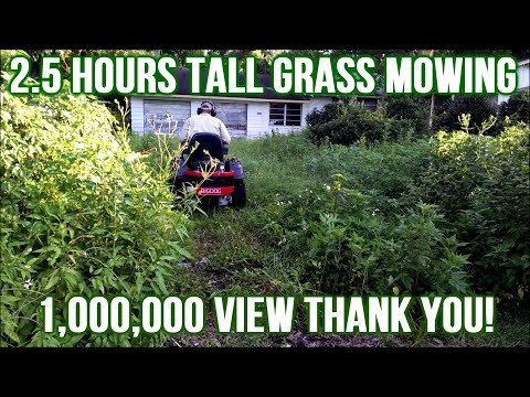 YouTube's Longest Tall Grass Mowing Video Gives Purpose To Your Life (1,000,000 View Thank You!)