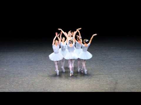 Vienna State Opera, funny ballet. Слава Украине!