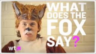 Ylvis The Fox dj shai strauss remix