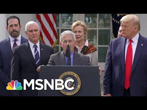 Witnesses Will Testify Remotely Before Senate On COVID-19 Response | MSNBC