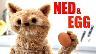 This Cat is NED - EP38 - NED & EGG