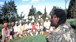 UN pays tribute to late environmentalist and Nobel laureate Wangari Maathai