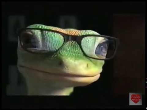 geico- -television-commercial- -2009- -b