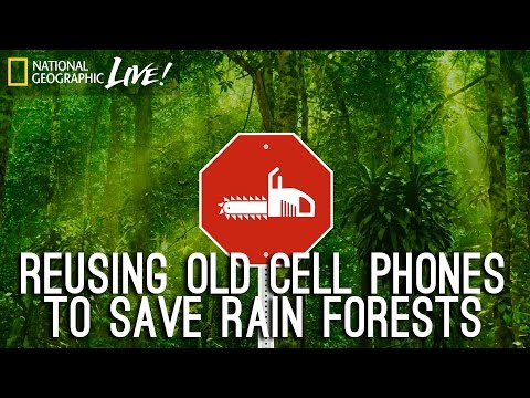 Saving the Rainforest with Old Cellphones