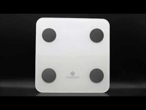Обзор приложения и весов Noerden