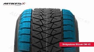 Обзор зимней шины Bridgestone Blizzak DM-V2 ● Автосеть ●