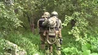 Спецоперация по ликвидации «торбеевского стрелка»