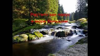 Караоке Эд Шульжевский - Настя