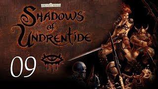 Neverwinter Nights: Shadows of Undrentide - 09 - Bomb Disposal Cat