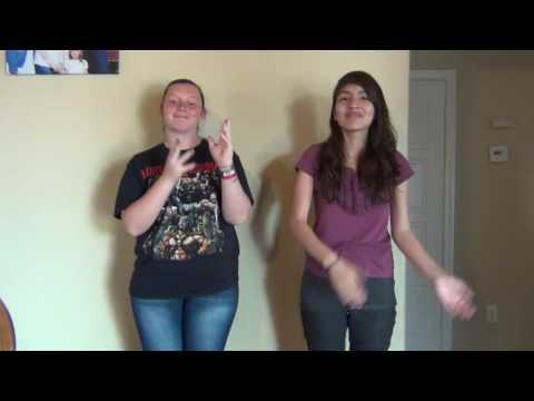 Hawaiian Roller Coaster Ride ASL ft. Lovely