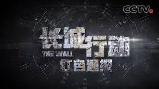 《天网》 长城行动 第一集 红色通报 | CCTV社会与法
