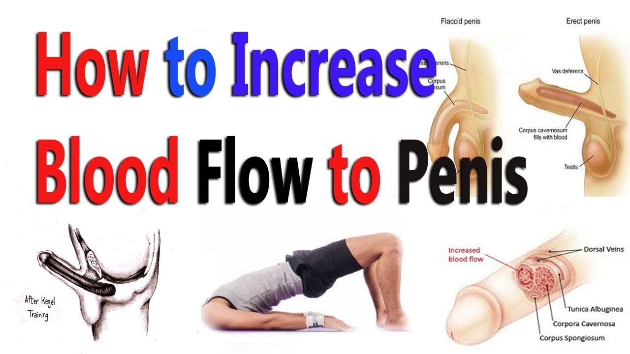 ways to improve erection