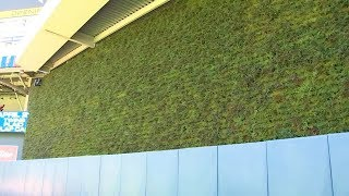 What's Cool @ Target Field: The Living Wall