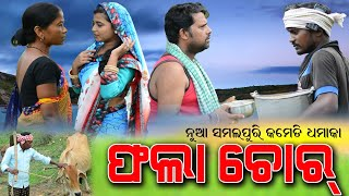 Phala Chor | ଫଲା ଚୋର | New Sambalpuri Comedy Video | D3 Films