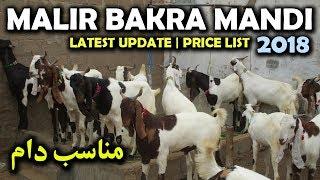 Malir Bakra Mandi Latest Update 2018 || Bakra Eid 2018 || Eid ul Adha 2018