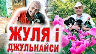 Жулька і Джульнайси/Хто найкращий сторожовий собака? Факти про Жулю/Собака фан - Жулька і горіхи/Dog