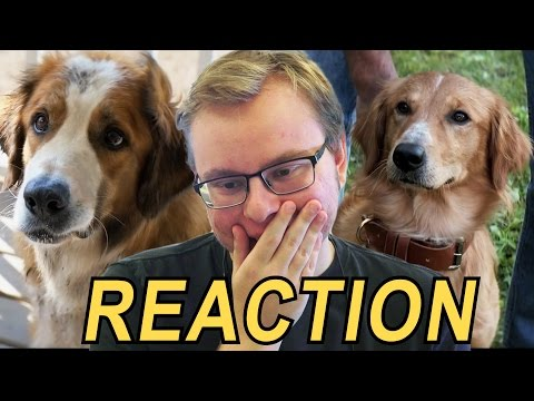 Anden Reacts to A Dog's Purpose trailer