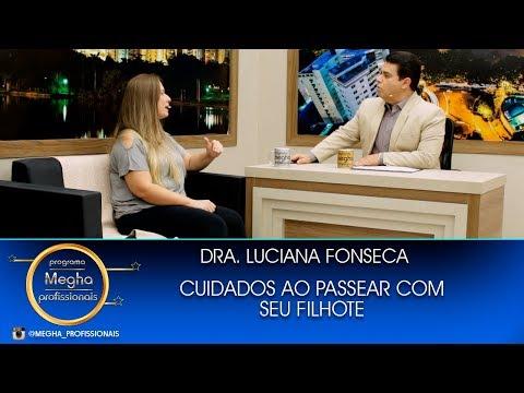 Cuidados Ao Passear Com Filhotes | Dra. Luciana Fonseca | Pgm 660 | B3