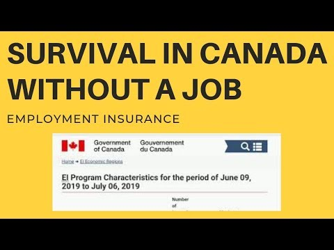 Survival In CANADA Without JOB || Employment Insurance