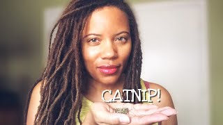 CATNIP USES: It's not just for cats!