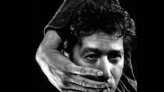 What's in a bird - BASHUNG