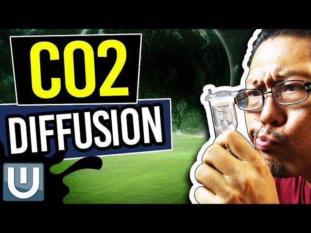 Aquarium Co2 Diffusion - The Ultimate Aquarium Co2 Guide - Part 5