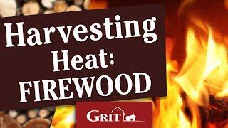 Harvesting Heat: Firewood