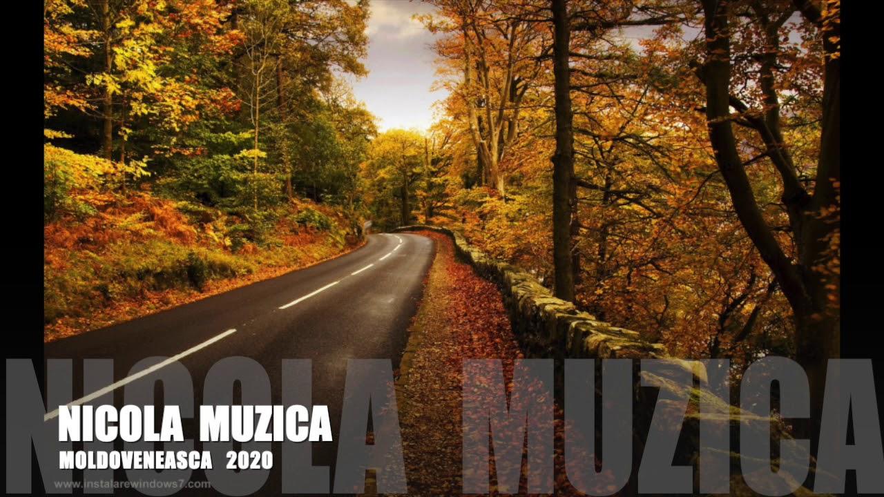 Colaj   batuta moldoveneasca 2020