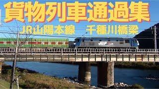 JR貨物 高速貨物列車9本 千種川橋梁にて① 2018.11.3