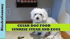 Cesar Dog Food Sunrise Grilled Steak and Eggs