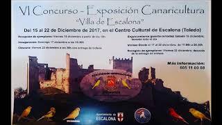 Promoción - VI CONCURSO CANARICULTURA VILLA DE ESCALONA