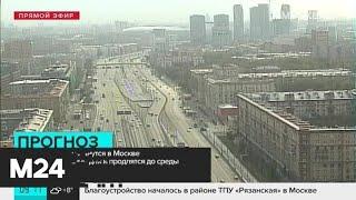 Смотреть видео Синоптики прогнозируют сильные дожди в воскресенье - Москва 24 онлайн