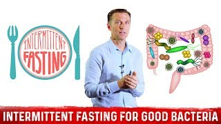 Supercharge Your Gut Microbes with Intermittent Fasting
