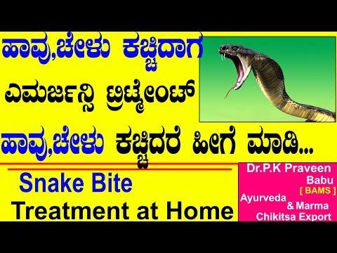 Snake Bite Treatment at Home | Ayurveda tips in Kannada | Dr.Praveen Babu | Snakebite Treatment