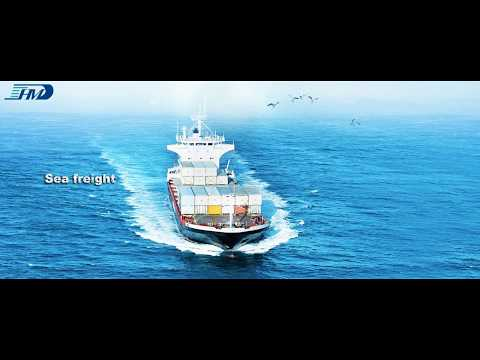 What sea freight service Sunny Worldwide Logistics provide