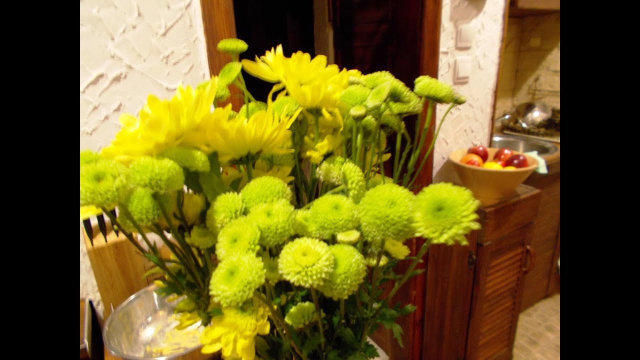 Button Poms Yellow Green Flowers Youtube
