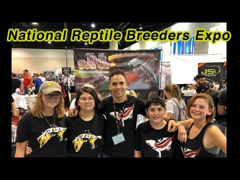 Vending at the National Reptile Breeders Expo and Axanthic Crested Geckos!