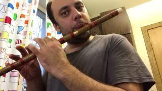 Флейта Ди с алиэкспресс: правильно наклеенная мембрана