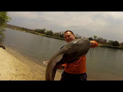 GoPro: African River Monster