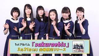 アルバム「sakuraebis」3月21日(水)会場限定リリース! 桜エビ~ずオフ...