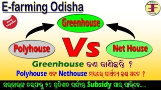 How to start Greenhouse farming in Odisha(Difference between Polyhouse and Nethouse in Odia).
